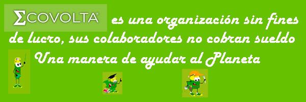 Ecovolta-sus-colaboradores-no-cobran-sueldo